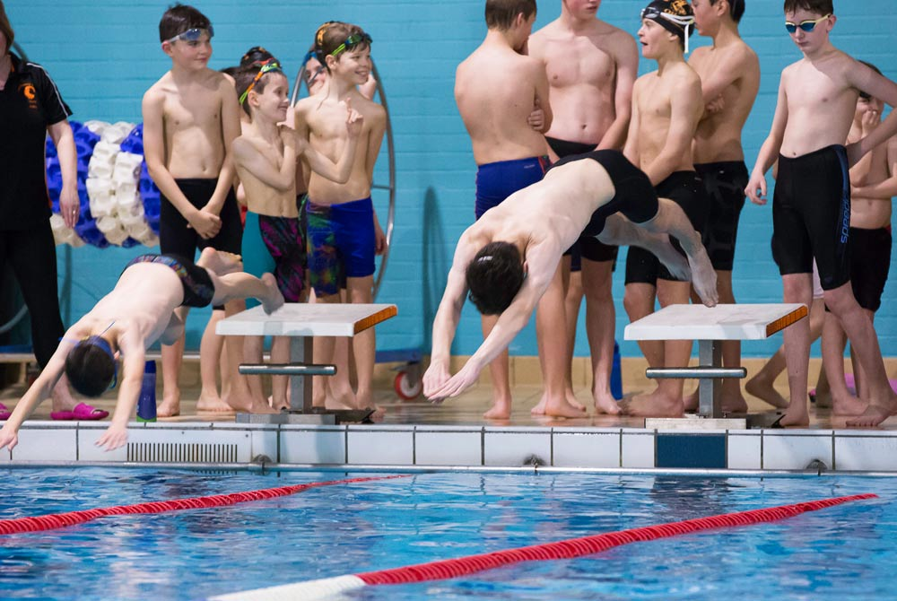 otters_diveclinic2